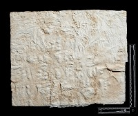 "view SQ 31: Naqsh-i Rustam: print marked. ""Vie 36--39"" digital asset: Naqsh-i Rustam (Iran): Squeeze of Inscription, DNb, Akkadian Version, on the Tomb of Darius I"