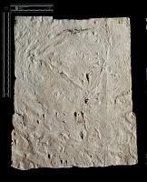"""view SQ 34: Naqsh-i Rustam: print marked. """"L bab IIIa 13--19"""" digital asset: Naqsh-i Rustam (Iran): Squeeze of Inscription, DNb, Akkadian Version, on the Tomb of Darius I"""