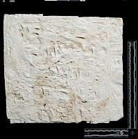 "view SQ 42: Naqsh-i Rustam: print marked. ""bab Mitte V 23--26"" digital asset: Naqsh-i Rustam (Iran): Squeeze of Inscription, DNb, Akkadian Version, on the Tomb of Darius I"