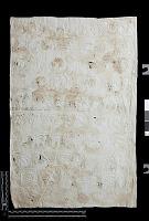 "view SQ 55: Naqsh-i Rustam, squeeze marked. ""Darius, NiR. Z. 41--49 rechts 4"" digital asset: Naqsh-i Rustam (Iran): Squeeze of Inscription, DNb, Old Persian Version, on the Achaemenid Tomb of Darius I"