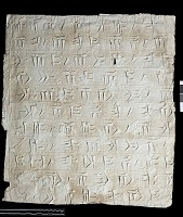 """view SQ 66: Persepolis, Great Terrace inscription. Old Persian text, 70f. digital asset: Excavation of Persepolis (Iran): Squeeze of """"Foundation Inscriptions,"""" DPe, Old Persian Version, Inscribed on Southern Terrace Wall"""