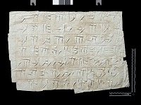 """view SQ 67: Persepolis, Great Terrace inscription. Old Persian text, 70g. digital asset: Excavation of Persepolis (Iran): Squeeze of """"Foundation Inscriptions,"""" DPe, Old Persian Version, Inscribed on Southern Terrace Wall"""