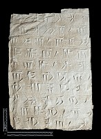 """view SQ 70: Persepolis, Great Terrace inscription. Old Persian text, 70b. digital asset: Excavation of Persepolis (Iran): Squeeze of """"Foundation Inscriptions"""", DPe, Old Persian Version, Inscribed on Southern Terrace Wall"""