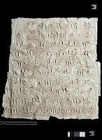 """view SQ 71: Persepolis, Great Terrace inscription. Old Persian text, 70g. digital asset: Excavation of Persepolis (Iran): Squeeze of """"Foundation Inscriptions,"""" DPe, Old Persian Version, Inscribed on Southern Terrace Wall"""