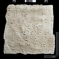 """view SQ 75: Persepolis, Great Terrace inscription. Babylonian text, 67e. digital asset: Excavation of Persepolis (Iran): Squeeze of """"Foundation Inscriptions,"""" DPg, Akkadian Version, Inscribed on Southern Terrace Wall"""