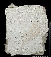 view SQ 22: Pahlavik, publ. Paikuli. p.161 digital asset: The Sassanian Inscription of Paikuli (Iraq): Squeeze D'.7, Parthian Version