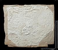 view SQ 100: Pahlavik, unpublished digital asset: The Sassanian Inscription of Paikuli (Iraq): Squeeze (unpublished), Parthian Version