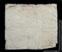 view SQ 105: Parsik, unpublished digital asset: The Sassanian Inscription of Paikuli (Iraq): Squeeze (unpublished), Middle Persian Version
