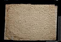 view SQ 107: Parsik, unpublished digital asset: The Sassanian Inscription of Paikuli (Iraq): Squeeze (unpublished), Middle Persian Version