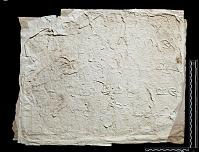 view SQ 111: Parsik, unpublished digital asset: The Sassanian Inscription of Paikuli (Iraq): Squeeze (unpublished), Middle Persian Version