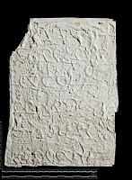 view SQ 118: Parsik, unpublished digital asset: The Sassanian Inscription of Paikuli (Iraq): Squeeze (unpublished), Middle Persian Version