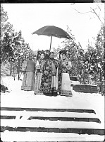 view The Empress Dowager Cixi in snow accompanied by attendants digital asset: The Empress Dowager Cixi in snow accompanied by attendants