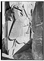 view Excavation of Persepolis (Iran): Throne Hall, Western Wall, South Jamb of Northern Doorway: View of Relief Picturing Hero's Combat with Composite Animal digital asset: Excavation of Persepolis (Iran): Throne Hall, Western Wall, South Jamb of Northern Doorway: View of Relief Picturing Hero's Combat with Composite Animal [graphic]