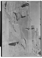 view Excavation of Persepolis (Iran): Throne Hall, Eastern Wall, South Jamb of Southern Doorway: View of Relief Picturing Hero's Combat with Bull digital asset: Excavation of Persepolis (Iran): Throne Hall, Eastern Wall, South Jamb of Southern Doorway: View of Relief Picturing Hero's Combat with Bull [graphic]
