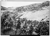 view Sahna (Iran): Rock-Cut Tomb digital asset: Sahna (Iran): Rock-Cut Tomb [graphic]
