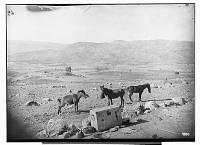 view Sardasht (Iraq): Panoramic View of Spilkan (Northern Most Spur of the Pir Omar Gudrun), Bazian Range, Qarachatan Plain, Tabin Valley, Doladrezh Glen, Tokma Range, Piädara Range, and the Breach of the Lesser Zab near Dukkan digital asset: Sardasht (Iraq): Panoramic View of Spilkan (Northern Most Spur of the Pir Omar Gudrun), Bazian Range, Qarachatan Plain, Tabin Valley, Doladrezh Glen, Tokma Range, Piädara Range, and the Breach of the Lesser Zab near Dukkan [graphic]