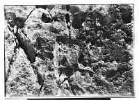 view Sarpul (Iran): Rock Reliefs Depicting Triumph of Annubanini with Akkadian Inscription digital asset: Sarpul (Iran): Rock Reliefs Depicting Triumph of Annubanini with Akkadian Inscription [graphic]