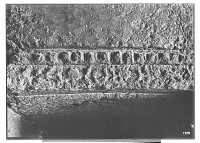 view Island of Kharg (Iran): Southern or Eastern Tomb: Detail View of Architectural Ornamentation digital asset: Island of Kharg (Iran): Southern or Eastern Tomb: Detail View of Architectural Ornamentation [graphic]