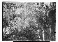 view Vicinity of Nishapur (Iran): Qadamgah Shrine digital asset: Vicinity of Nishapur (Iran): Qadamgah Shrine [graphic]