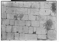 view Baalbeck (Lebanon): Fortified Walls of the Citadel: View of Arabic Inscription No. XV, in Naskhi Mamluk Script digital asset: Baalbeck (Lebanon): Fortified Walls of the Citadel: View of Arabic Inscription No. XV, in Naskhi Mamluk Script [graphic]