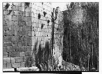 view Baalbeck (Lebanon): Fortified Walls of the Citadel: View of Arabic Inscription No. XV (right) and No. XVII (left), in Naskhi Mameluke Script digital asset: Baalbeck (Lebanon): Fortified Walls of the Citadel: View of Arabic Inscription No. XV (right) and No. XVII (left), in Naskhi Mameluke Script [graphic]