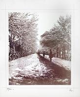 view Nafisi Family Photograph Albums of Qajar Iran digital asset number 1