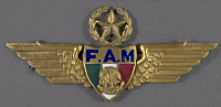 view Badge, Command Pilot, Mexican Air Force digital asset number 1