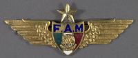 view Badge, Senior Pilot, Mexican Air Force digital asset number 1
