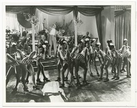 view Print of Cab Calloway with his band and dancers onstage at the Cotton Club digital asset number 1