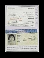 view Falsified Passport digital asset number 1