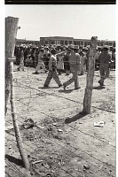view Braceros at Processing Center digital asset: Beyond barbed wire, an official armed with a rubber truncheon directs braceros while others wait in line at the Monterrey Processing Center, Mexico.