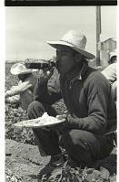 view Bracero at Meal Time digital asset: A bracero sits in a Californian pepper field and has lunch.