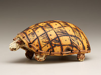 view Turtle toy digital asset number 1