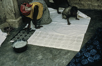 view Yoruba woman stenciling a pattern on textile using the resist dyeing (Adire) technique, Ede, Nigeria digital asset: Yoruba woman stenciling a pattern on textile using the resist dyeing (Adire) technique, Ede, Nigeria
