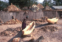 view The making of a dug-out canoe, near Dakar, Senegal digital asset: The making of a dug-out canoe, near Dakar, Senegal