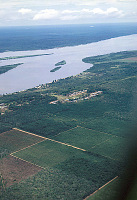 view INEAC, agricultural research station, Yangambi, Congo (Democratic Republic) digital asset: INEAC, agricultural research station, Yangambi, Congo (Democratic Republic)