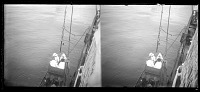 """view From Antwerp, Belgium to Boma, Congo On board the """"SS Anversville."""" digital asset: From Antwerp, Belgium to Boma, Congo On board the """"SS Anversville."""""""