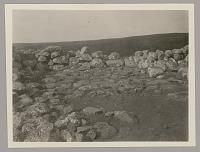 view Heiau (A) Floor, Platform, and Mortar, Looking Southeast 1920 digital asset number 1