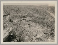 view Sacrifice Stones, Looking Southwest 1920 digital asset number 1