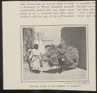 view Man, Woman, and Child in Costume with Donkey Bearing Grain? In Street Outside Mud Houses n.d digital asset number 1