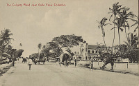 view View Along Colpetty Road Showing Group in Costume With Thatch-Covered Wagons and Jinrikshas n.d digital asset number 1