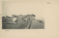 view Group in Costume with Carriages and Jinrikshas on Road Along Shore n.d digital asset number 1