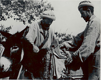 view Two Men, Muleteers, in Costume and Mule with Saddle 1956 digital asset number 1