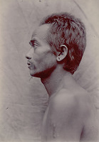view Portrait of Man with Pierced Ear and Keloid Scarification (Profile) 1908 digital asset number 1