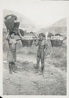view Man and Woman in Costume with Body Paint and Ornaments, And Showing Method of Carrying Tuber Crops in Baskets 1936 digital asset number 1