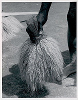 view Man with Binto (Rice Sheaf) n.d digital asset number 1