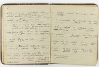 view American Indian vocabularies and grammatical notes, 1893 digital asset number 1
