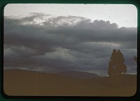 view Stormy day in Africa, circa 1956 digital asset number 1