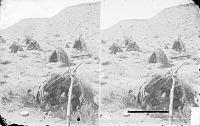 "view ""Ka-ni-ga. The Camp Ground"" 1873 digital asset number 1"