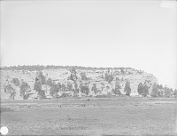view The Mesa looking southeast, Cebollita Valley, New Mexico 1899 digital asset number 1